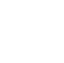 NDIS Equine Faciliated / Assisted Learning